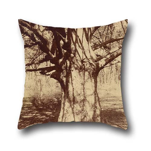 18 X 18 Inches / 45 By 45 Cm Oil Painting Eugène Atget - Beech Tree Throw Pillow Case ,double Sides Ornament And Gift To Kids,son,couples,home Office,lover,dining Room