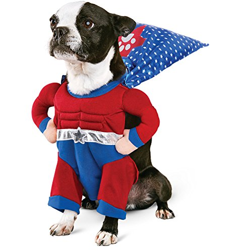 Petco Halloween Superhero Boy Dog Costume, X-Small - Petco Halloween Costumes