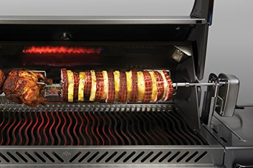 rotisserie for gas grill - 9