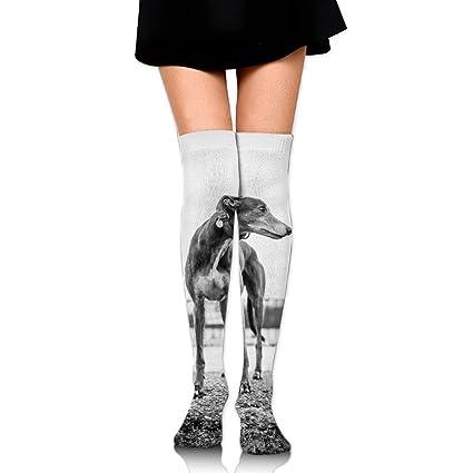 922968c395 Greyhound Print Cotton Compression Socks For Women. Graduated Stockings For  Nurses, Maternity, Travel