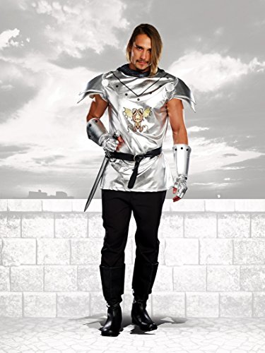 [Dreamgirl Men's Royal Warrior Costume Knight Time, Silver, Large] (Dragon Warrior King Adult Mens Costumes)