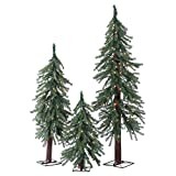 Artificial Christmas Trees. This Fake Xmas Alpine-style Green Pine Trees Set Flame Retardant, Easy Assembly, Looks Natural. Great For Indoor & Holiday Season Party Decor. 2, 3 & 4 Foot.