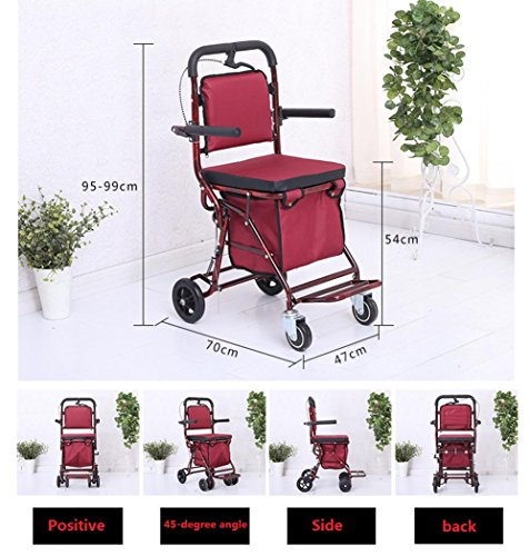 Amazon.com: LUCKYYAN Folding Big Wheeled Portable Rolling Chair, The Elderly Shopping Cart with Shopping Basket: Home & Kitchen