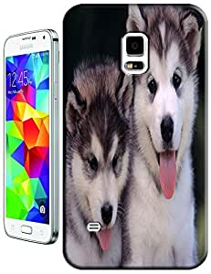 Two lovely dogs stand together cell phone cases for Samsung Galaxy N3