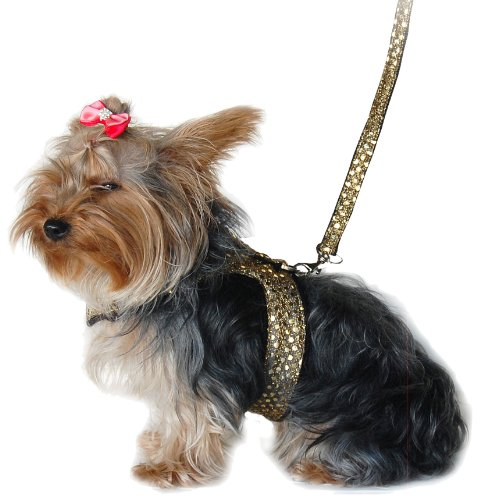 Anima Gold Sparkle Harness and Leash Set, XX-Small, My Pet Supplies