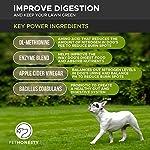 PetHonesty GrassGreen Grass Burn Spot Chews for Dogs - Dog Pee Lawn Spot Saver Treatment Caused by Dog Urine - Cranberry, Apple Cider Vinegar, DL-Methionine Grass Treatment Rocks - 90 Chew Treats 14