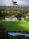 Ballyfin%3A Portrait of an Irish Country
