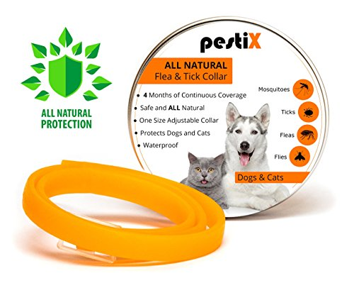ALL Natural Flea Prevention Collar for Dogs and Cats | Collar Prevents, Controls, Removes and Repels Pests | One Size Adjustable Collar with 4 Months of Coverage and Protection