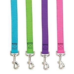 Guardian Gear Basic Nylon Double Layer Dog Leash, 6-Feet x 1-Inch Lead, Electric Green