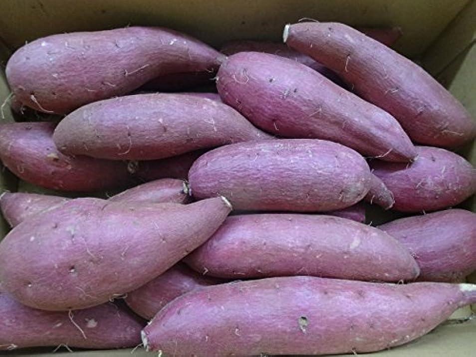 ふりをする国内の方法論「安納いも品評会」で3度も金賞を受賞 「種子島産 安納芋(生芋) 5㎏(Mサイズ~Lサイズ)」