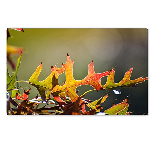 Personalized Oak Leaf Mat (Luxlady Large Table Mats Oak Leaves Autumn Plant Natural Natural Rubber Material Image)