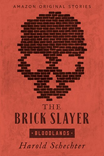 The Brick Slayer (Bloodlands collection) cover