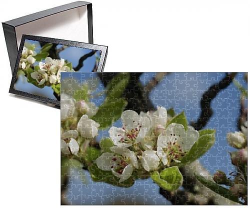 Pear Tree Photo (Photo Jigsaw Puzzle of Wild pear tree blossom)