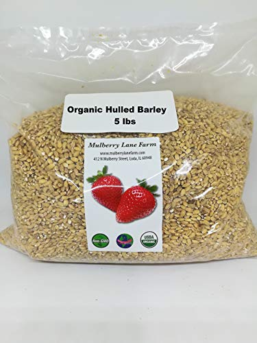 Hulled Barley 5 Pounds (five lbs) (dehulled) USDA Certified Organic Non-GMO BULK