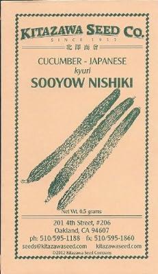 Japanese Cucumber - Sooyow Nishiki