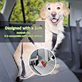 OMorc Safety Leads de los Mascotas del Vehículo del Coche Cinturón de Seguridad del Asiento para los Perros / Gatos,Pet Safety Leads Car Seat Belt, Seatbelt Tether Car Restraint for Dogs,16-25 pulgadas ajustable - [2 Pack] Negro