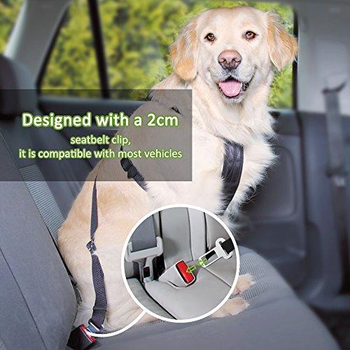 OMorc Safety Leads de los Mascotas del Vehículo del Coche Cinturón de Seguridad del Asiento para los Perros / Gatos,Pet...