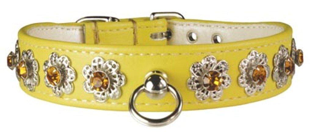 OmniPet Majestic Starburst Dog Collar, 3 4  x 14 , Yellow