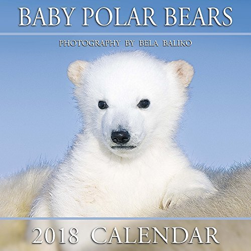 "2018 Baliko Baby Polar Bears 12""x12"" Wall Calendars pdf"