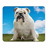 White Bulldog Mouse Pad - Animal Theme Dog Breed - Stationery Gift - Computer Office School Business Desk Supplies