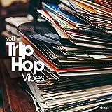 Trip Hop Vibes / Various