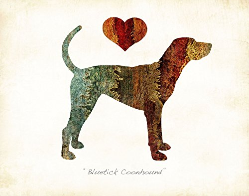 Bluetick Coonhound Dog Breed Watercolor Art Print by Dan - Breed Dog Coonhound