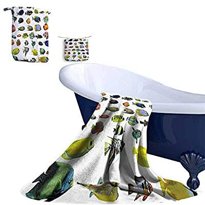 Leigh home 3 Piece Bath Towel Set, Fish Figur Emperor Angelfish Tang Cornfish Underwater Pattern Bath Towels and Hand Towel and Washcloths.
