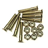 "Everland 1.25"" Hardware Screws (Gold)"