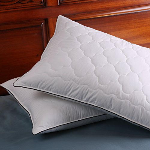 Set of 2, Down and Feather Pillow Double Layered Fabric Bed