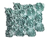 Decorative Pillow Cover - SeptCity Decorative Throw Pillow Covers for Couch Cushion Case, Romantic Love Satin Rose Wedding Party Home Decor , Home Gift (Set of 2)-Turquoise