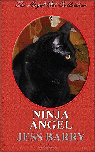 Ninja Angel (Angel Cats): Amazon.es: Jess Barry: Libros en ...