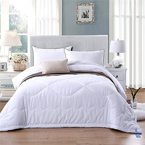 Youareking White Down Alternative Quilted Duvet Comforter, All Season Hypoallergenic Plush Microfiber Fill Duvet Insert (Twin 60''x79'')