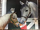 """SHARE WITH FRIENDS"" 21 Christmas Cards by LANG, HORSE Art by Persis Clayton Weirs"