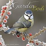 Garden Bird