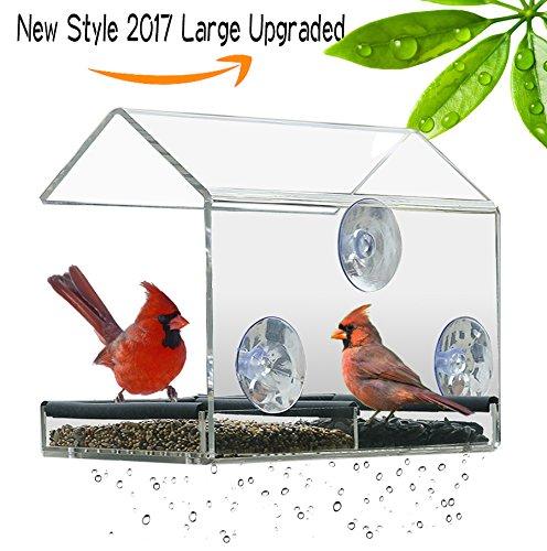 bird house window mount - 4