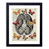 Human Brain Illustration With Butterflies Upcycled Wall Art Vintage Dictionary Art Print 8x10 inches / 20.32 x 25.4 cm Unframed