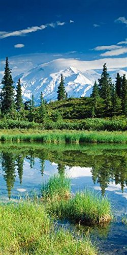 Walls 360 Peel & Stick Wall Murals: Mount McKinley with Pond (36 in x 72 in) ()