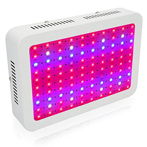 1000W LED Grow Light, MRJ Single Chips Full Spectrum Grow Lamp for Greenhouse Hydroponic Indoor Plants Veg and Flower (10W Leds) by MRJ