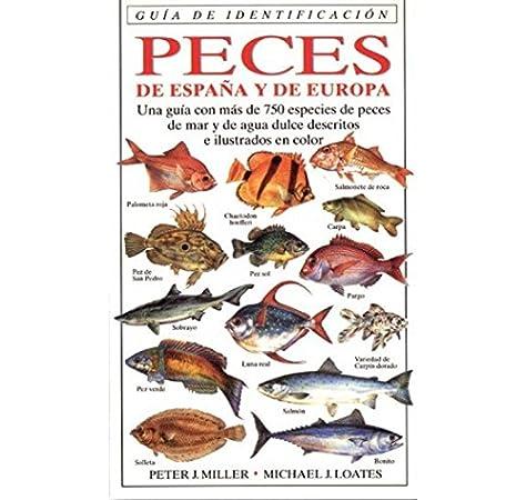 PECES DE ESPAÑA Y EUROPA.G.IDENTIFICACION GUIAS DEL NATURALISTA-PECES-MOLUSCOS-BIOLOGIA MARINA: Amazon.es: MILLER, P. Y LOATES, M.: Libros