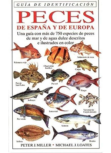 PECES DE ESPAÑA Y EUROPA.G.IDENTIFICACION GUIAS DEL NATURALISTA ...