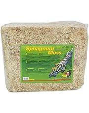 Lucky Reptile Sphagnum Moss terrariummoss