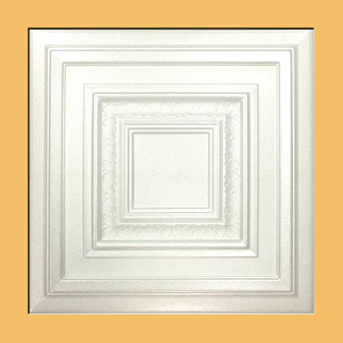 white-styrofoam-ceiling-tile-antyx-package-of-8-tiles-other-sellers-call-this-chestnut-grove-and-r31