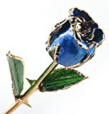 M Dream Long Stem Trimmed 24K Real Rose Dipped in Gold Blue 11 Inches Set of 1,Best Gift for Her, Women, Girlfriends, Wife, Girl, Valentine's Day, Mother's Day, Anniversary, Birthday, Wedding