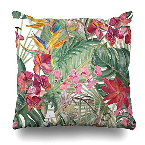 Ahawoso Throw Pillow Cover Square 20x20 Bird Atercolor Tropical Pattern Exotic Flowers Deliciosa Parks Forest Garden Hawaiian Jungle Zippered Cushion Pillow Case Home Decor ()
