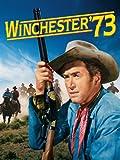 Winchester '73 HD (AIV)