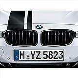 BMW 51712240778 M Performance Gloss Black Kidney Grille