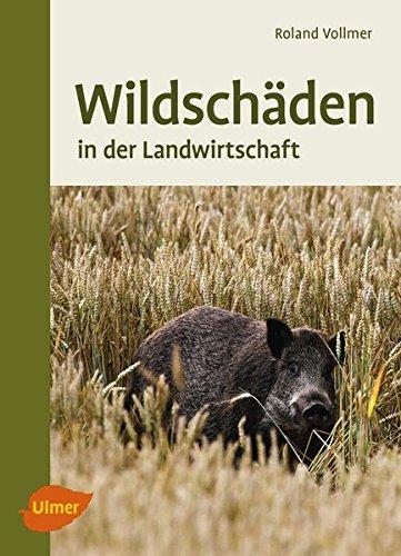 wildschden-in-der-landwirtschaft