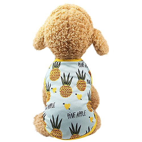 Huaa Pet Couples Dress Puppy Dog Prince Lovely Pineapple/Strawberry Vest,pet Clothes Gucci,Light Blue,XS (Online Gucci Store)