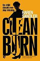 Clean Burn: Introducing Detective Janelle Watkins