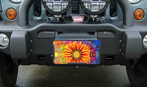 bedazzled license plate frame